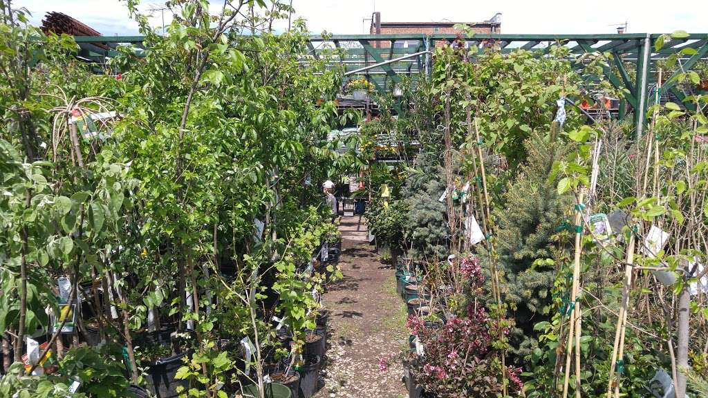 Vernis Garden Center - florist  | Photo 2 of 8 | Address: 22-22 Hazen St, East Elmhurst, NY 11370, USA | Phone: (718) 278-7348