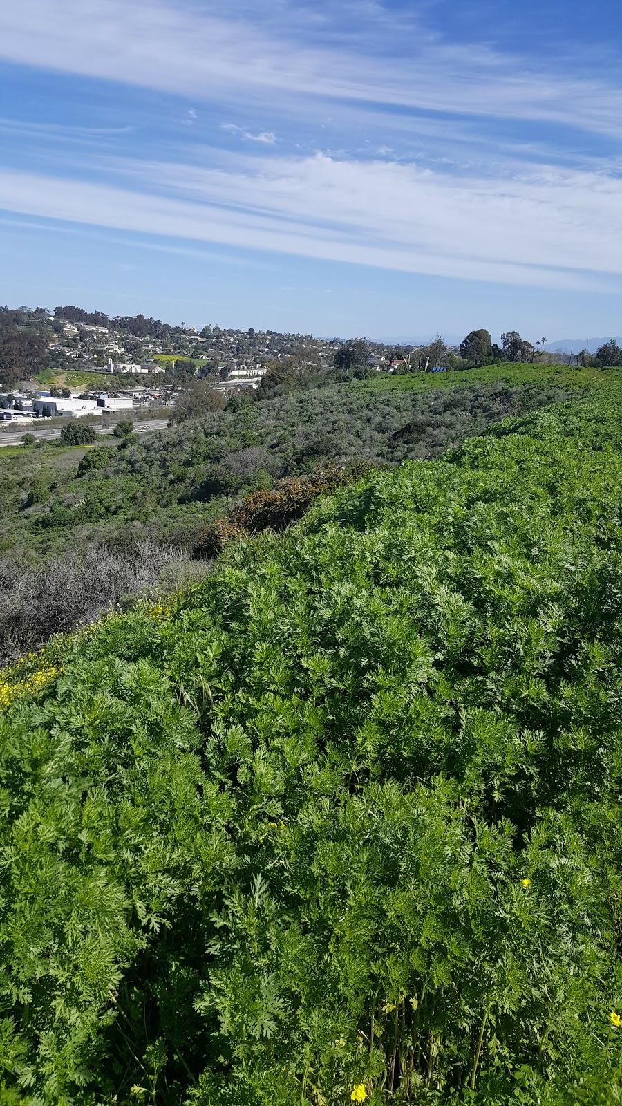 Joseph Carrasco Park - park  | Photo 7 of 8 | Address: 2506 Skylark Dr, Oceanside, CA 92054, USA | Phone: (760) 435-5041