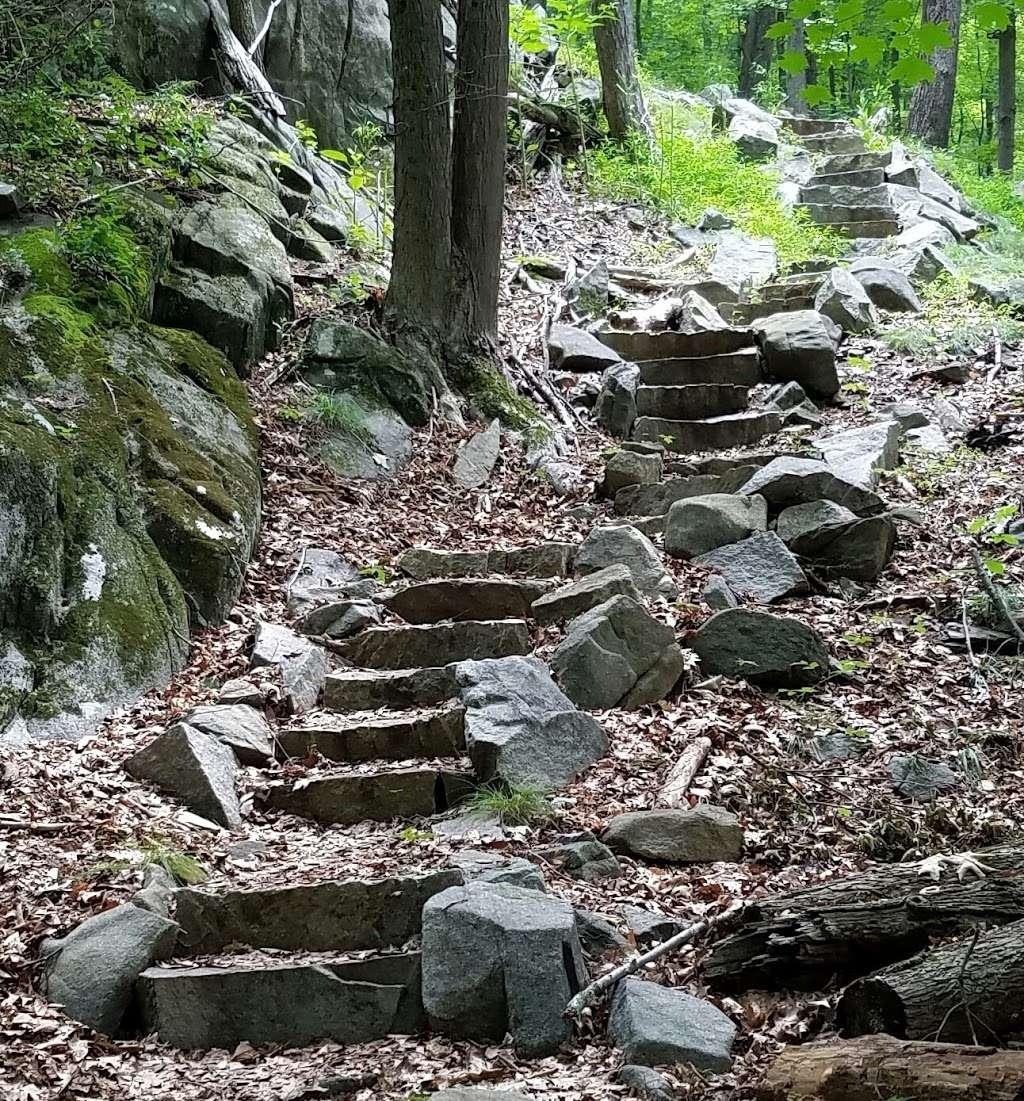 Sylvan Glen Nature Preserve - park  | Photo 5 of 10 | Address: Hunterbrook Rd, Mohegan Lake, NY 10547, USA | Phone: (914) 245-4650
