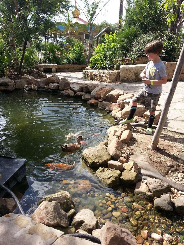 San Antonio Aquarium - aquarium  | Photo 8 of 10 | Address: 6320 Bandera Rd, Leon Valley, TX 78238, USA | Phone: (210) 310-3210