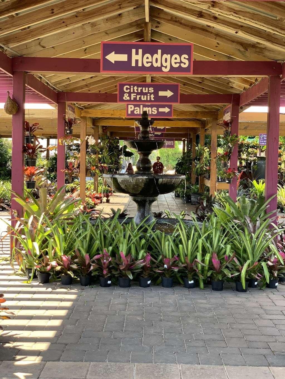 Flamingo Road Nursery - store  | Photo 2 of 10 | Address: 1655 S Flamingo Rd, Davie, FL 33325, USA | Phone: (954) 476-7878