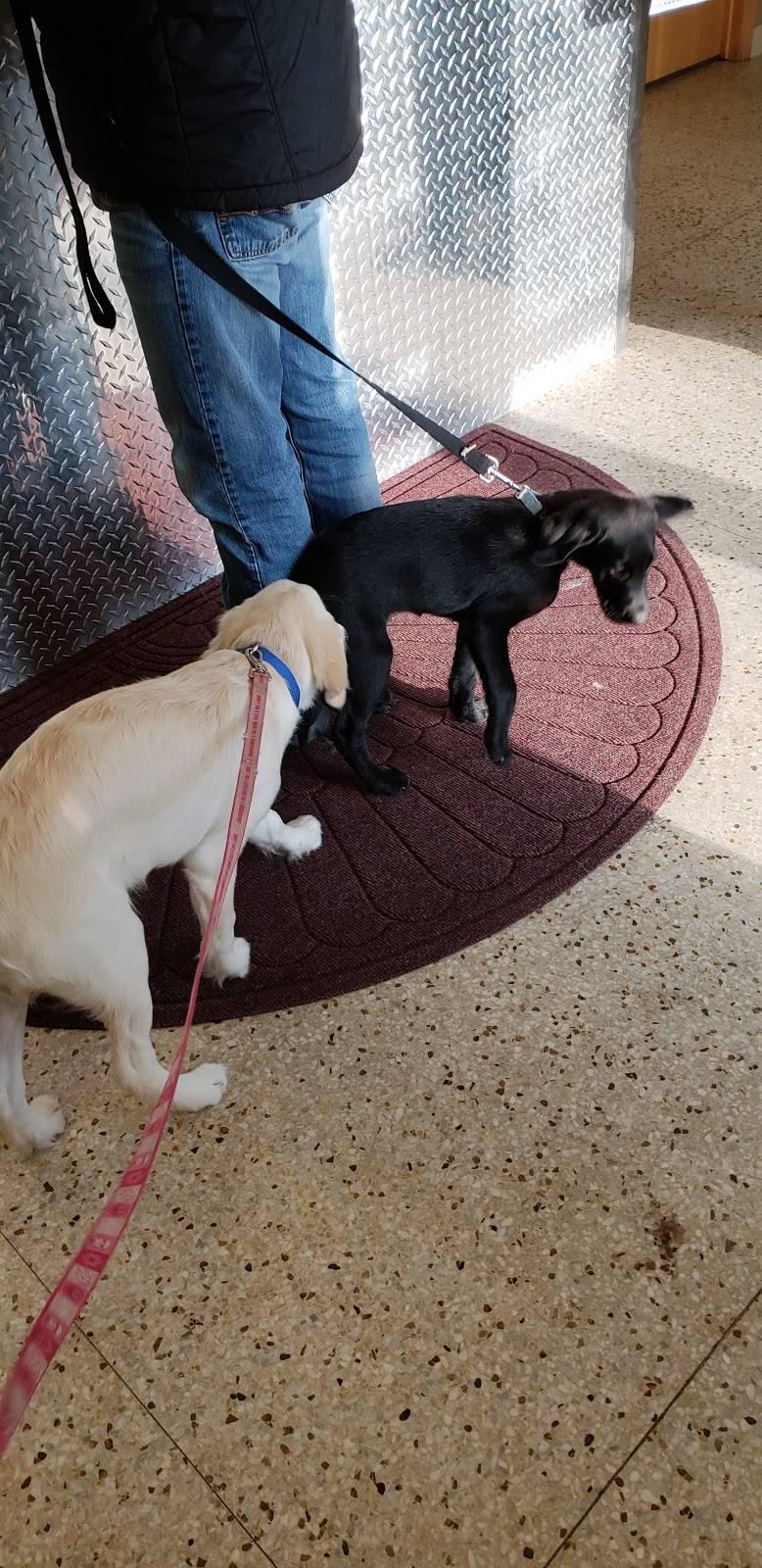 Cottage Grove Animal Hospital - veterinary care  | Photo 6 of 8 | Address: 8136 E Point Douglas Rd, Cottage Grove, MN 55016, USA | Phone: (651) 768-0200