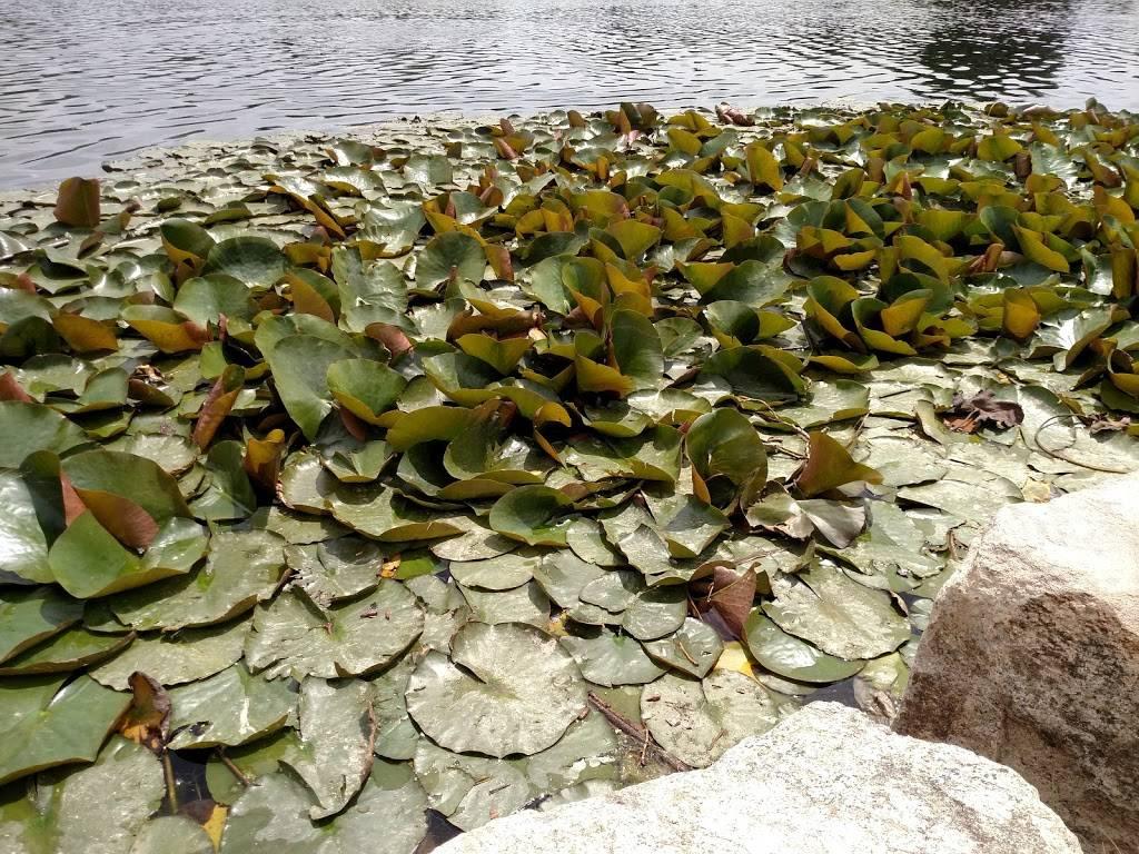 Rocky Mountain Lake Park - park  | Photo 7 of 9 | Address: 3301 W 46th Ave, Denver, CO 80211, USA | Phone: (720) 913-1311