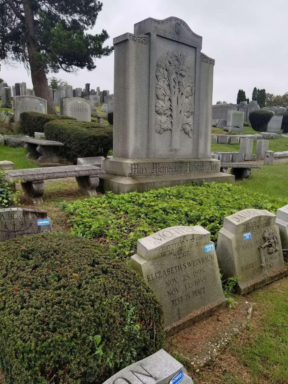 Mount Lebanon Cemetery - cemetery  | Photo 1 of 8 | Address: 7800 Myrtle Ave, Glendale, NY 11385, USA | Phone: (718) 821-0200