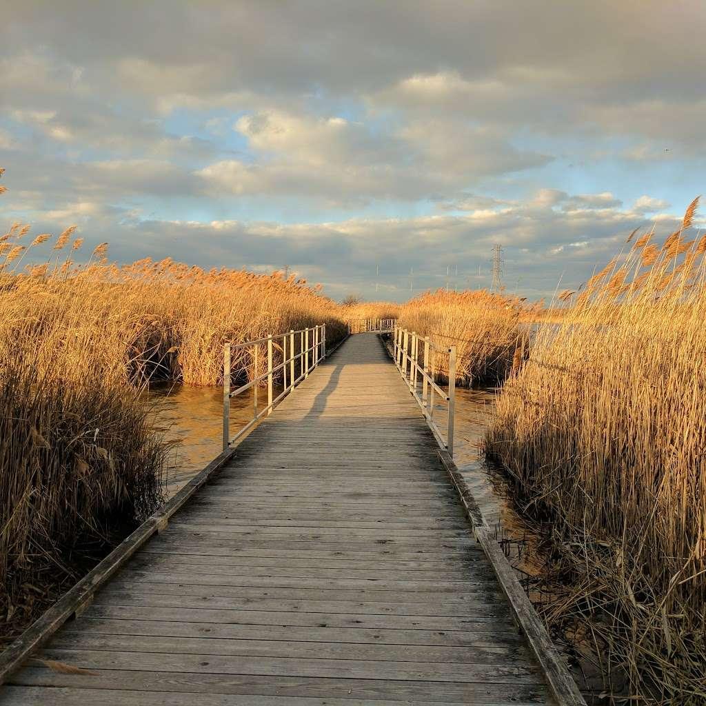 Compensation Land - park  | Photo 1 of 10 | Address: Lyndhurst, NJ 07071, USA