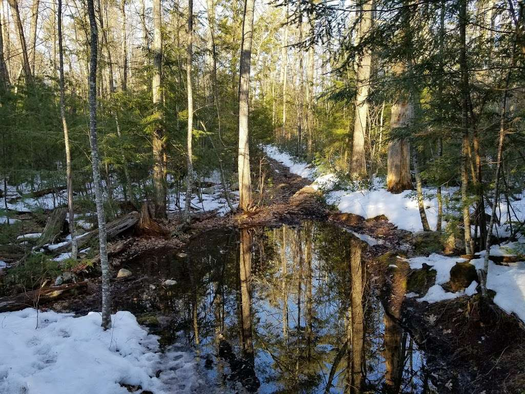 Cider Mill Pond Trailhead - park    Photo 6 of 10   Address: 03033, Brookline, NH 03033, USA