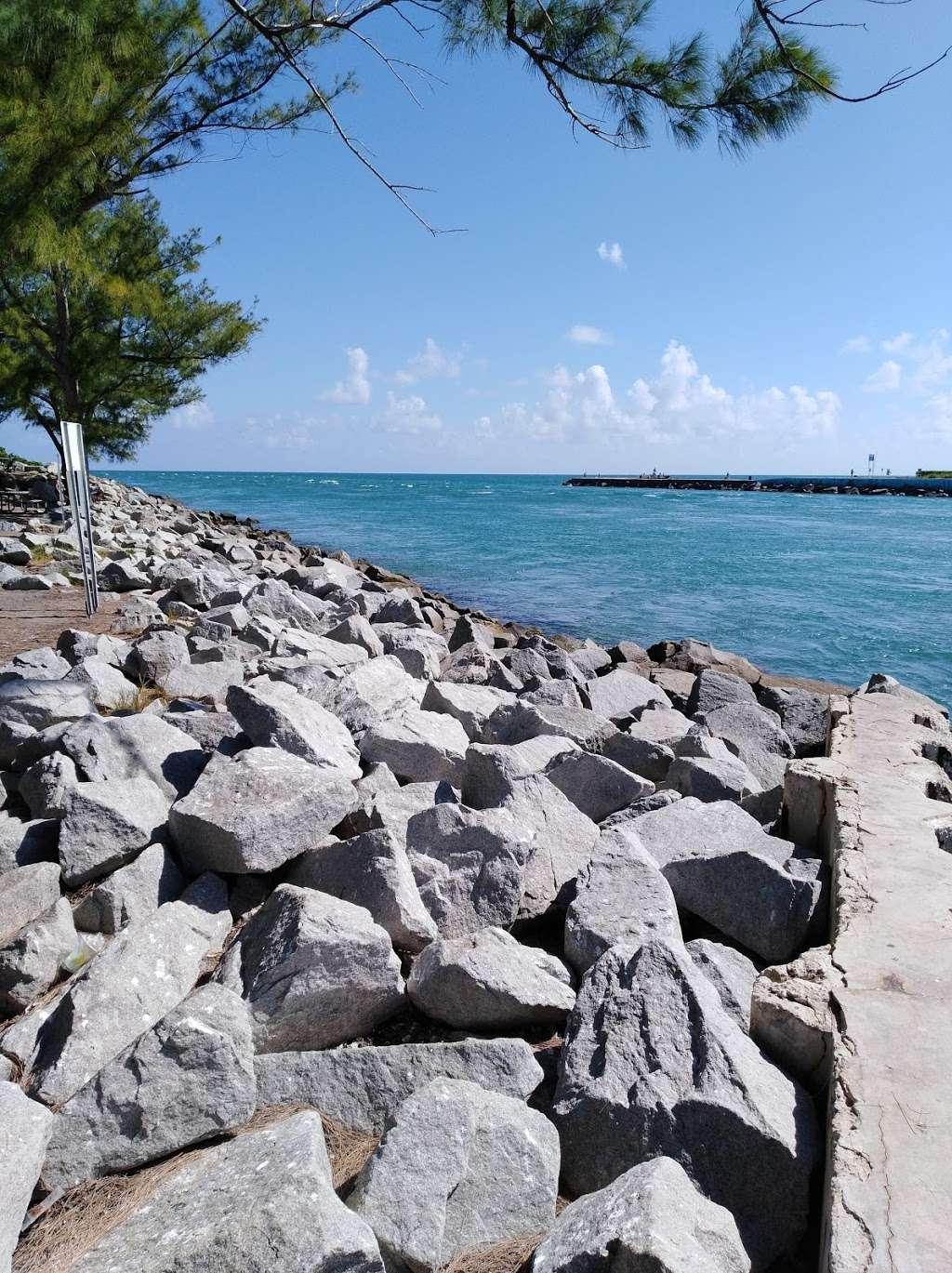 Haulover Park Bayside Picnic Area - park  | Photo 9 of 10 | Address: 13401 Collins Ave, Miami Beach, FL 33154, USA