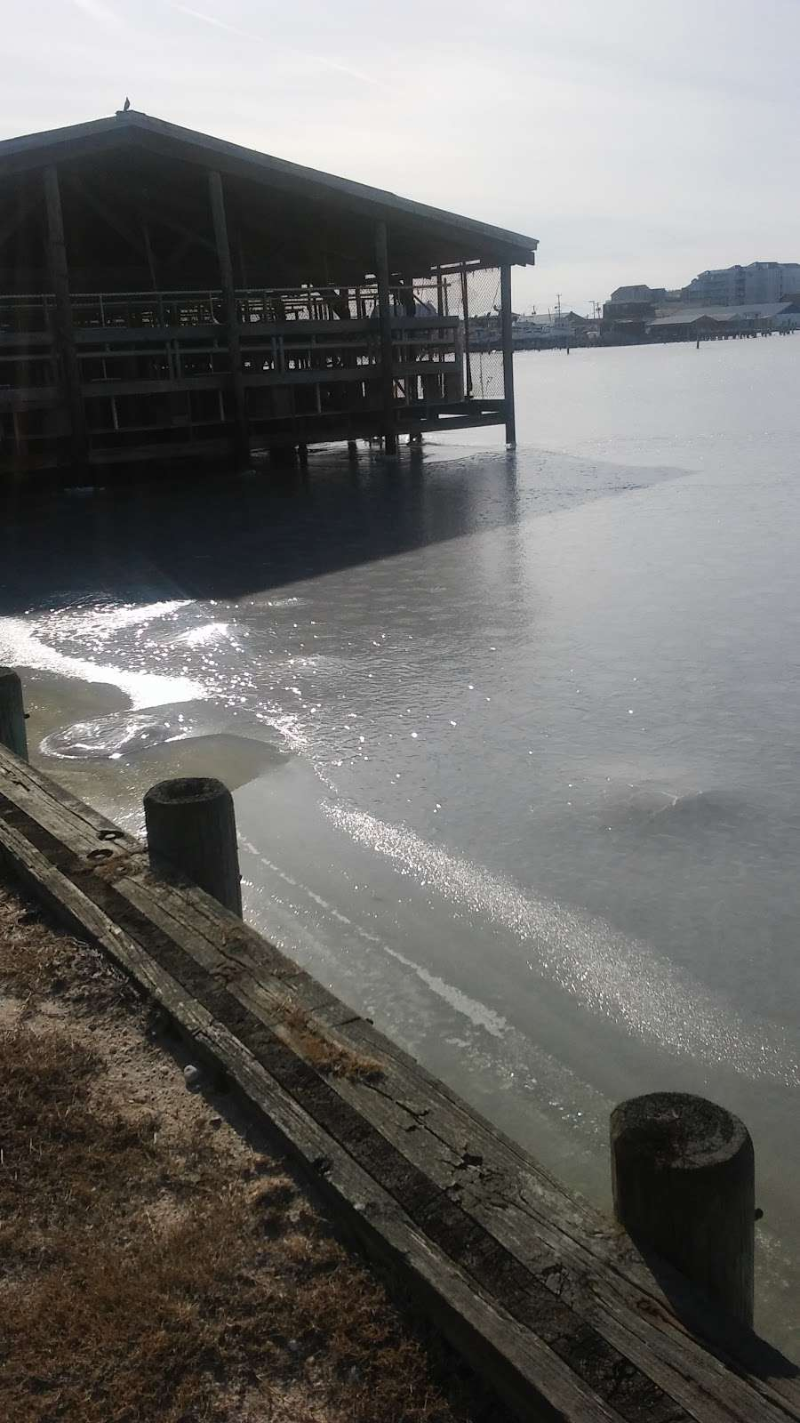 Harbour Light Condo 4 Sale - Rent - real estate agency  | Photo 2 of 10 | Address: 102 Williams St #511, Crisfield, MD 21817, USA