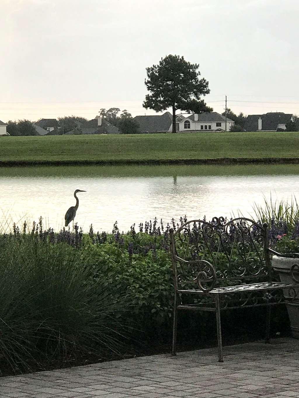 Bridgeland Welcome Center - park  | Photo 4 of 10 | Address: 16919 N Bridgeland Lake Pkwy, Cypress, TX 77433, USA | Phone: (281) 304-5588