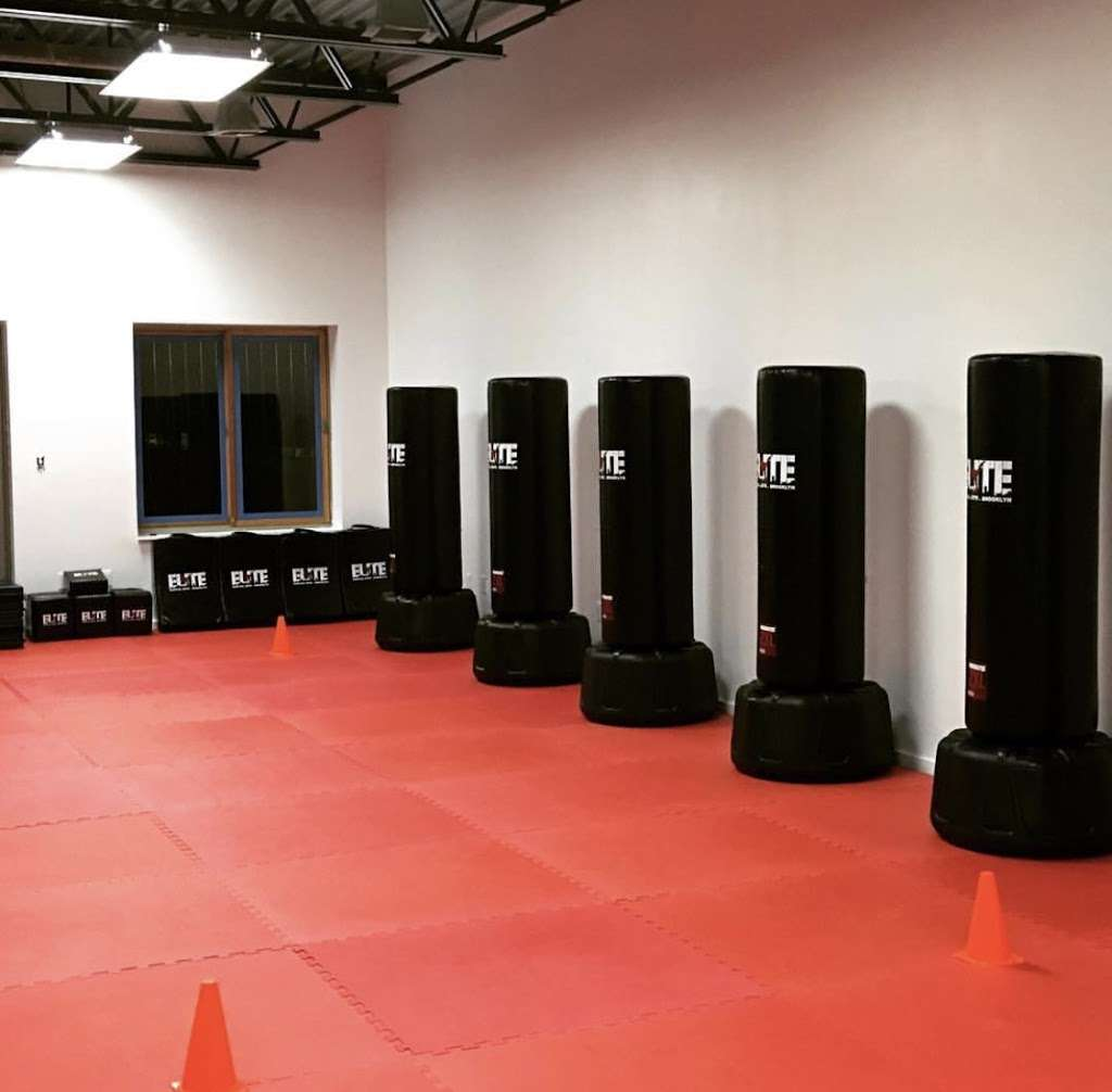 Elite Martial Arts of Brooklyn - health  | Photo 1 of 9 | Address: 1779 Pacific St, Brooklyn, NY 11213, USA | Phone: (646) 952-1196