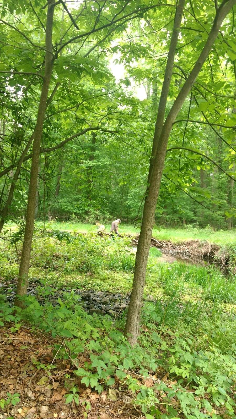 Flat Rock Brook Nature Center - park  | Photo 8 of 10 | Address: 288 Jones Rd, Englewood, NJ 07631, USA