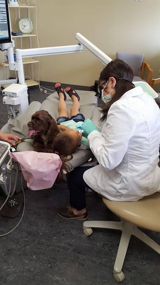 Minnesota Dental Arts - doctor  | Photo 7 of 19 | Address: 5565 Blaine Ave E #290, Inver Grove Heights, MN 55076, USA | Phone: (651) 552-0404