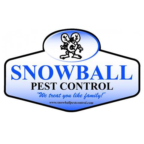Snowball Pest Control - home goods store  | Photo 3 of 6 | Address: 4634 Mary Ingles Hwy, Highland Heights, KY 41076, USA | Phone: (859) 635-7793