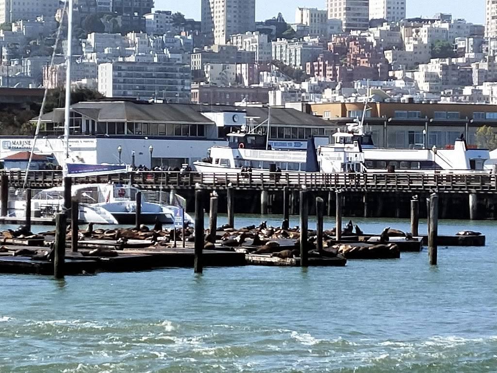 SP+ Parking - parking    Photo 10 of 10   Address: Pier 45, San Francisco, CA 94133, USA   Phone: (650) 219-5855