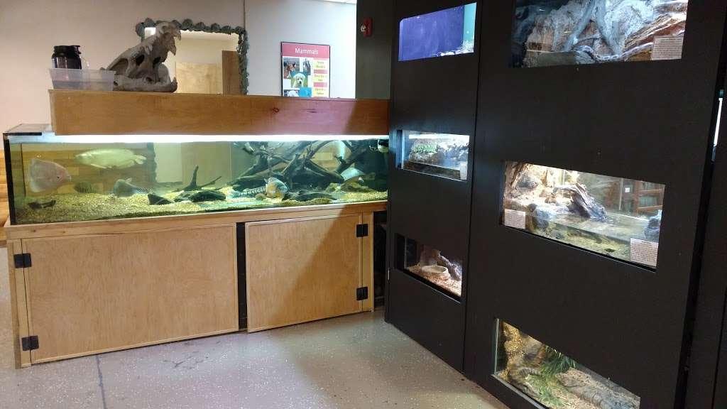 Rizzos Wildlife World - zoo  | Photo 5 of 10 | Address: 1 Gold Mine Rd, Flanders, NJ 07836, USA | Phone: (973) 586-0444