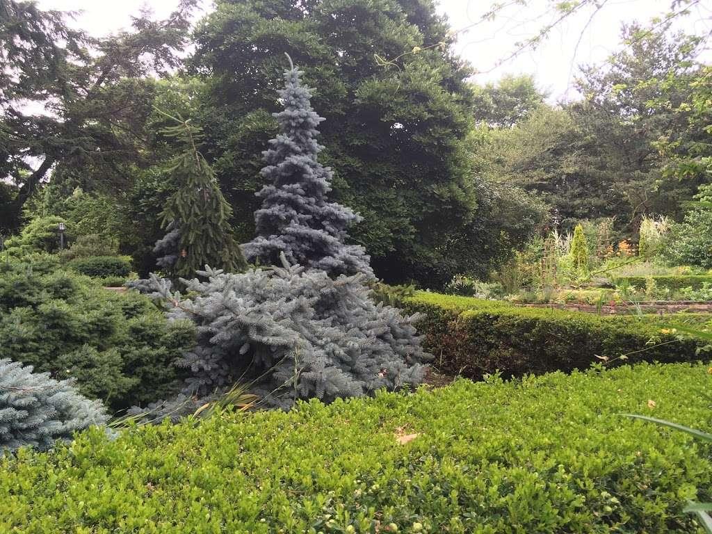 Fragrance Garden Alice Recknagel Ireys - park  | Photo 1 of 10 | Address: 998 Mary Pinkett Avenue, Brooklyn, NY 11225, USA | Phone: (718) 623-7200