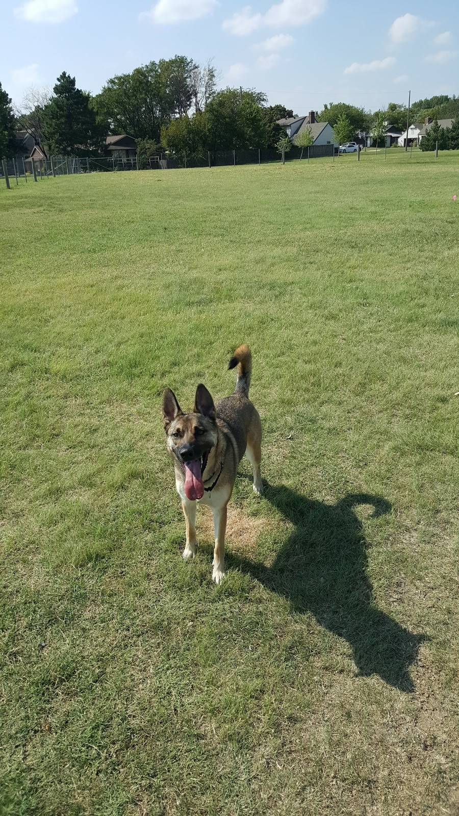 Meridian Dog Park - park    Photo 7 of 9   Address: 2127 N Meridian Ave, Wichita, KS 67203, USA   Phone: (316) 268-4361