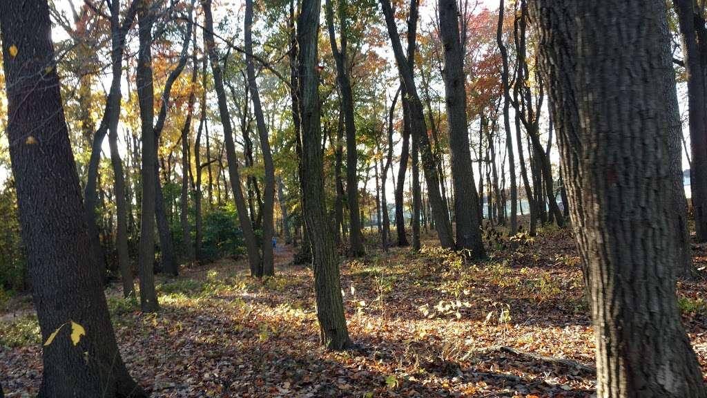 Ella Harris Recreation Park - park  | Photo 4 of 10 | Address: 127 Commissioners Rd, Mullica Hill, NJ 08062, USA