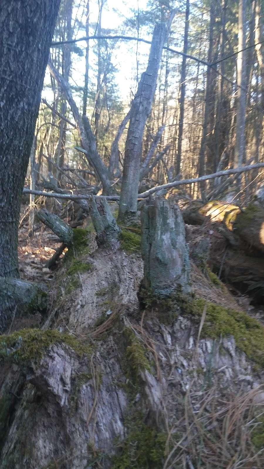 Dacey Community Field - park  | Photo 6 of 10 | Address: Lincoln Street, Franklin, MA 02038, USA | Phone: (508) 520-4909