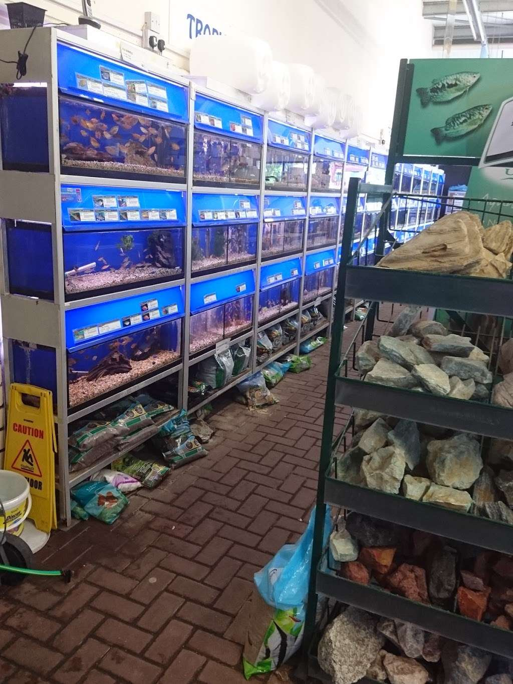 Maidenhead Aquatics Crawley - store  | Photo 1 of 3 | Address: Squires garden centre, Horsham Rd, Crawley RH11 8PL, UK | Phone: 01293 538256
