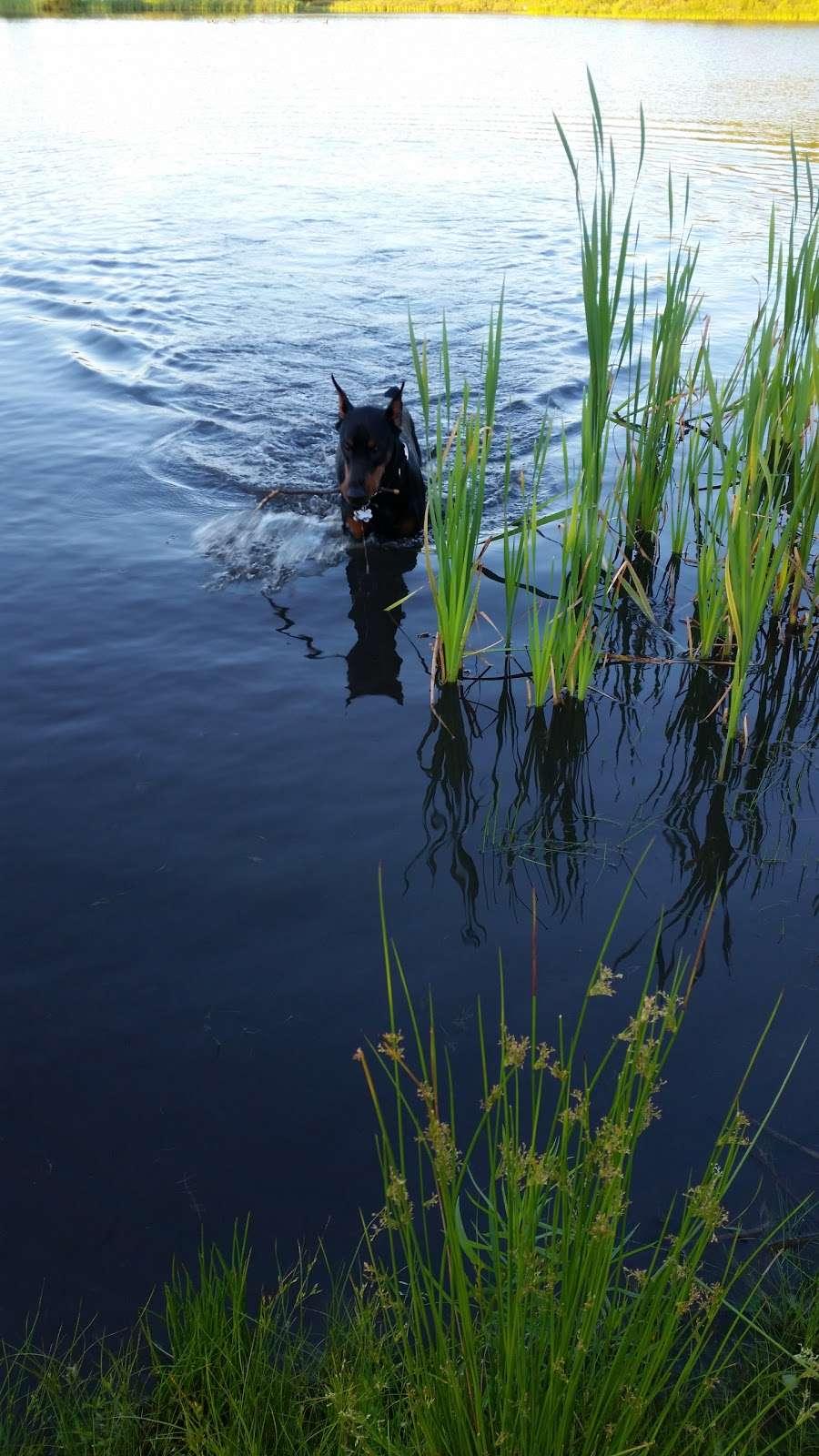 Lake Marie - park  | Photo 2 of 8 | Address: Weatherly, PA 18255, USA