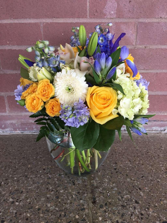 Noahs Ark Florist - florist  | Photo 8 of 10 | Address: 200 Hudson Street Harborside Financial Center, Jersey City, NJ 07311, USA | Phone: (201) 521-1031