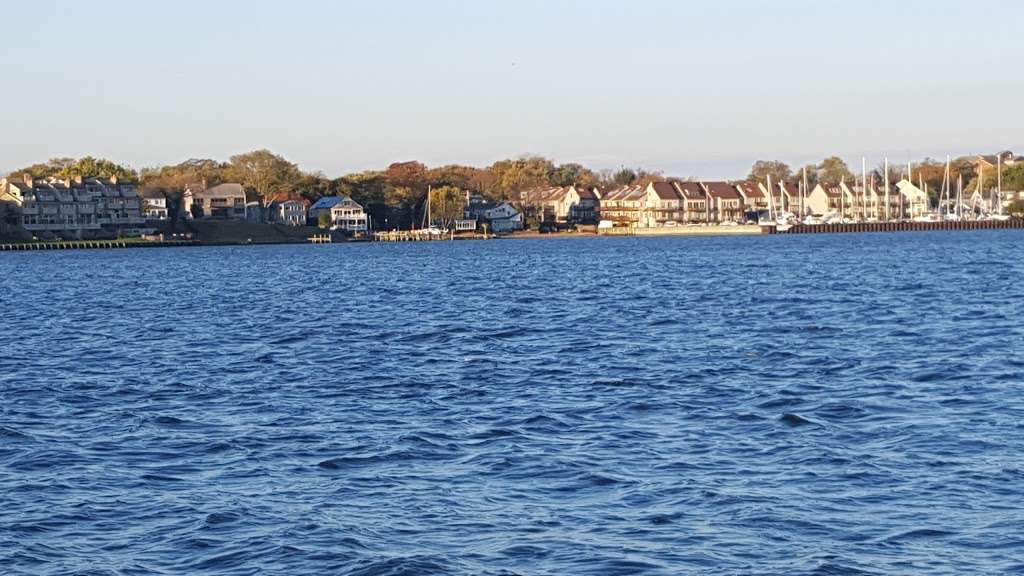 Horn Point Park - park  | Photo 3 of 10 | Address: Chesapeake Landing, Annapolis, MD 21403, USA