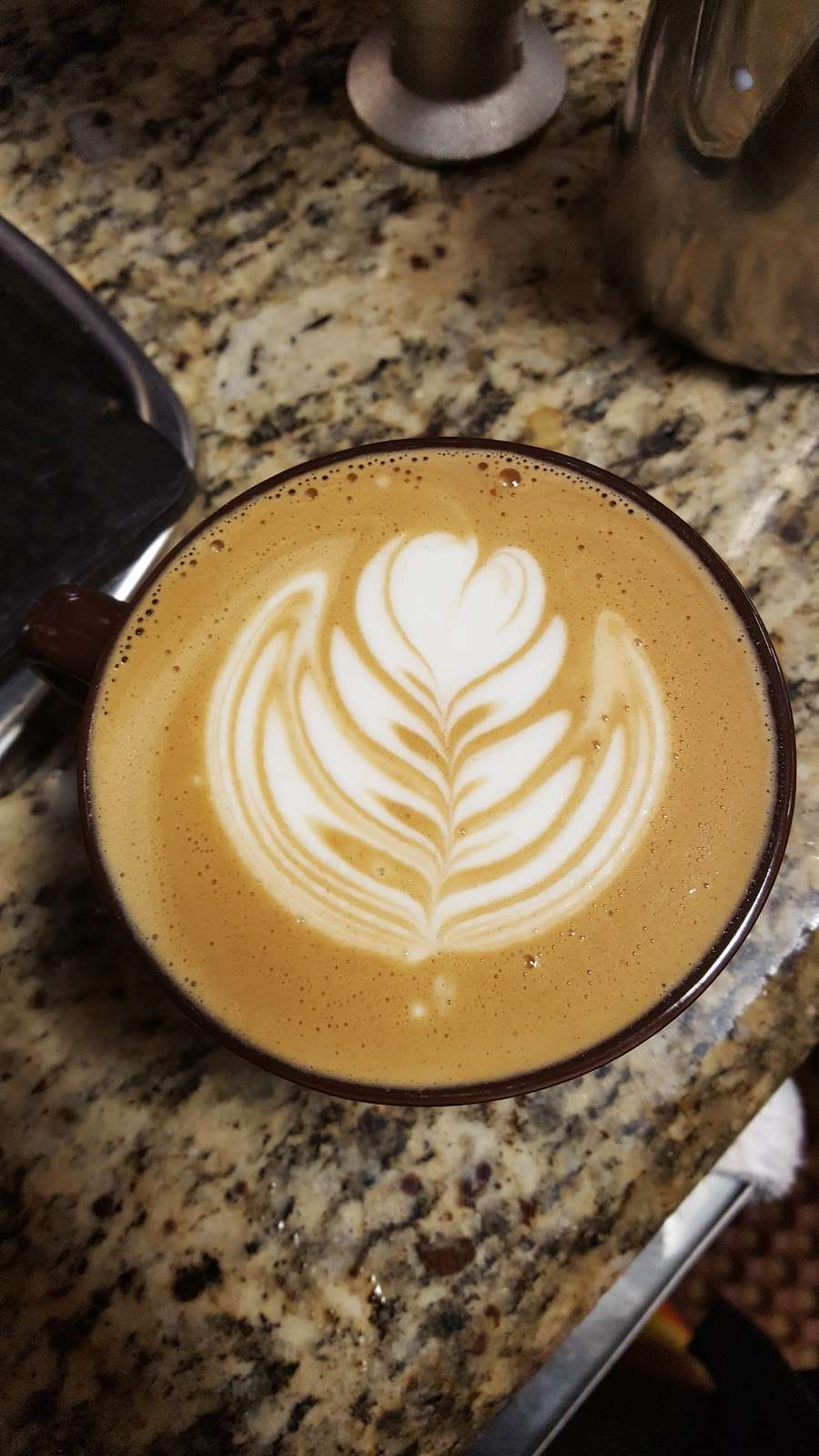 Muir Woods Coffee House - cafe  | Photo 4 of 10 | Address: 9500 Gilman Dr, La Jolla, CA 92093, USA