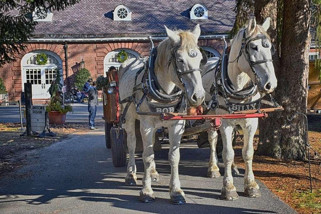 Liberty Farm & Carriage Company - travel agency  | Photo 2 of 2 | Address: Ironmine Rd, Burrillville, RI 02830, USA | Phone: (401) 651-6004