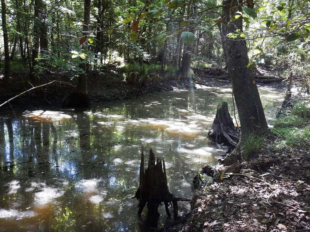 Lone Star Trailhead #4 - park  | Photo 5 of 9 | Address: FM 149, Montgomery, TX 77356, USA | Phone: (936) 344-6205
