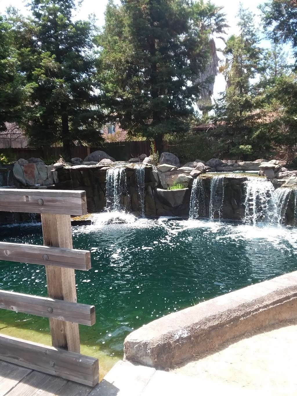 Lawler Falls Park - park    Photo 9 of 10   Address: 1401 Hammond Ln, Suisun City, CA 94585, USA