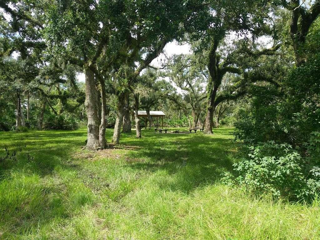 White Loop Group Campsite - campground  | Photo 1 of 5 | Address: Orlando, FL 32833, USA | Phone: (386) 329-4404