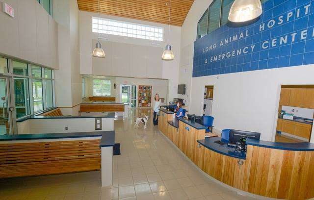 Long Animal Hospital and Emergency Center | Charlotte NC - veterinary care  | Photo 4 of 10 | Address: 2523 South Blvd, Charlotte, NC 28203, USA | Phone: (704) 523-2996
