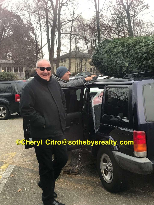 Freds Christmas Trees - lodging  | Photo 2 of 2 | Address: 875 Grove St, Montclair, NJ 07043, USA