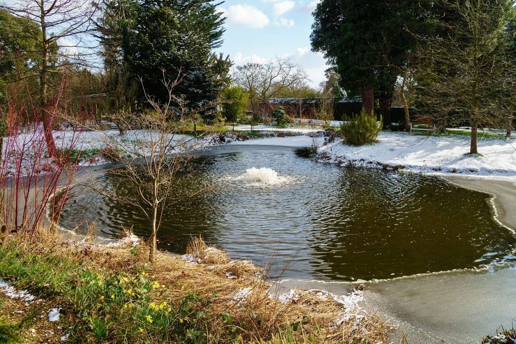 Myddelton House Gardens - cafe  | Photo 7 of 10 | Address: Bulls Cross, Enfield EN2 9HG, UK | Phone: 0300 003 0610