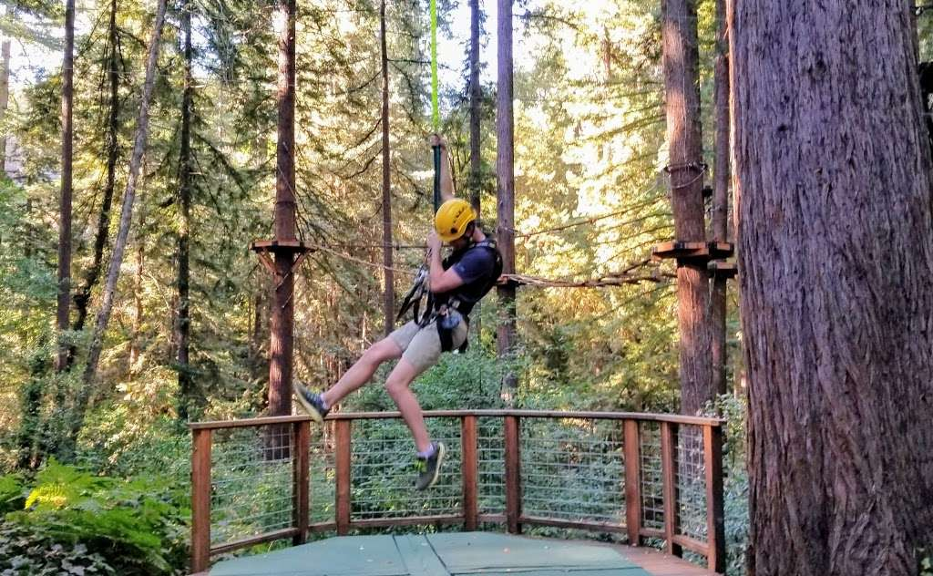 Redwood Canopy Tour - travel agency  | Photo 3 of 10 | Address: 17 Conference Dr, Felton, CA 95014, USA | Phone: (831) 430-4357