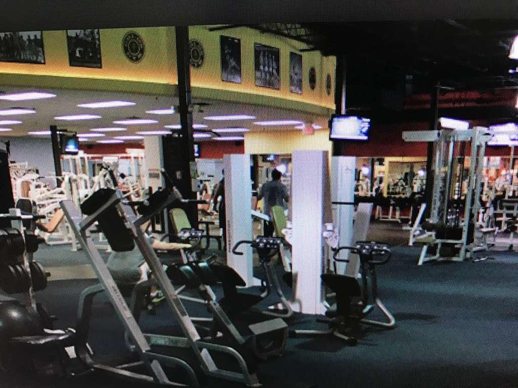 Golds Gym - gym    Photo 5 of 10   Address: 100 Hollister Rd, Teterboro, NJ 07608, USA   Phone: (201) 288-6000