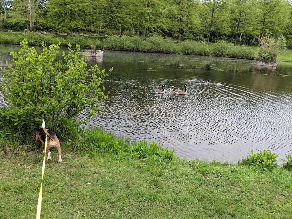 Heistein Park - park  | Photo 1 of 10 | Address: Randolph, NJ 07869, USA | Phone: (973) 989-7100
