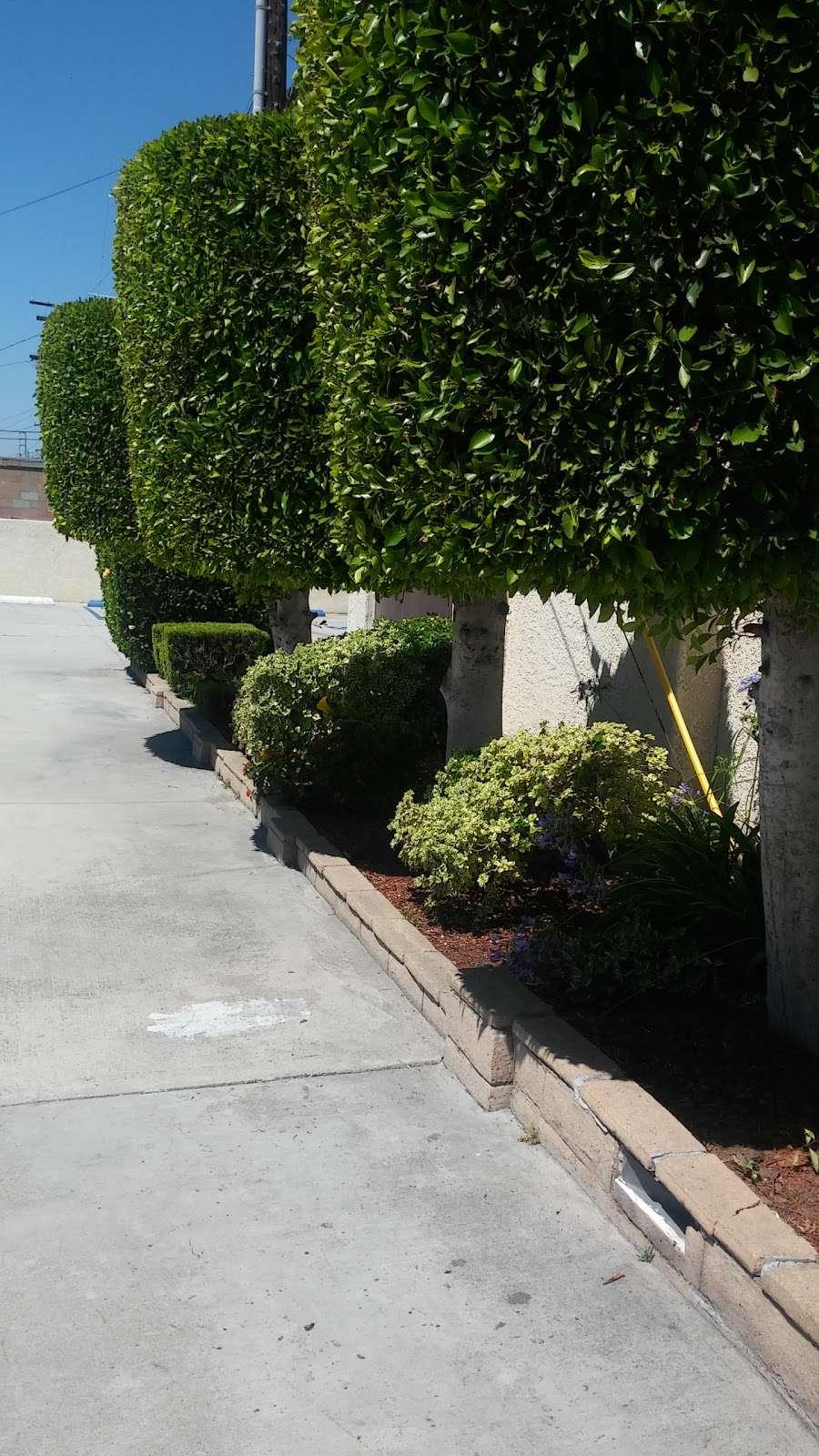 Kingdom Hall of Jehovah's Witnesses - church  | Photo 4 of 10 | Address: 12121 Atlantic Ave, Lynwood, CA 90262, USA | Phone: (310) 635-9056