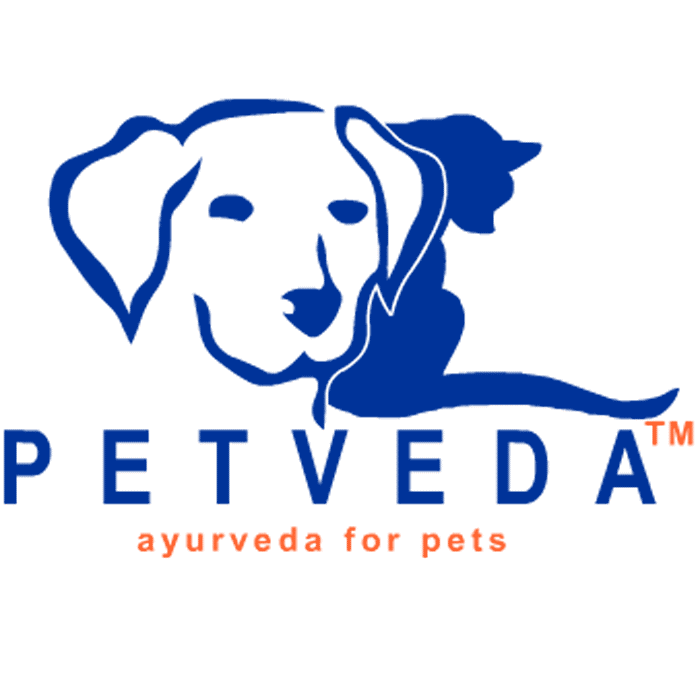 Petveda - store  | Photo 3 of 3 | Address: 600 Harbor Blvd #1145, Weehawken, NJ 07086, USA | Phone: (877) 778-8642