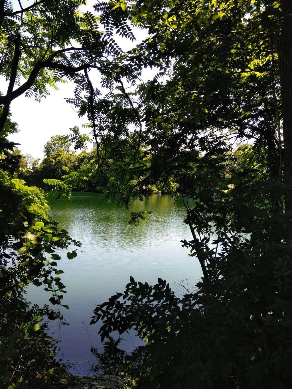Myerstown Quarry Lake - park  | Photo 8 of 10 | Address: 331 E Mill Ave, Myerstown, PA 17067, USA