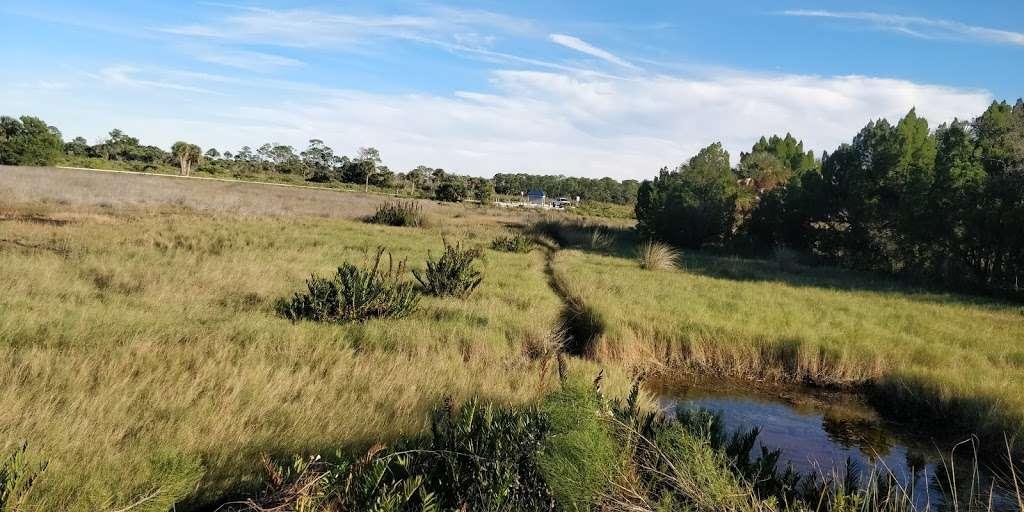 Blackpoint Wildlife Drive Entrance - park  | Photo 7 of 10 | Address: Blackpoint Wildlife Dr, Titusville, FL 32796, USA