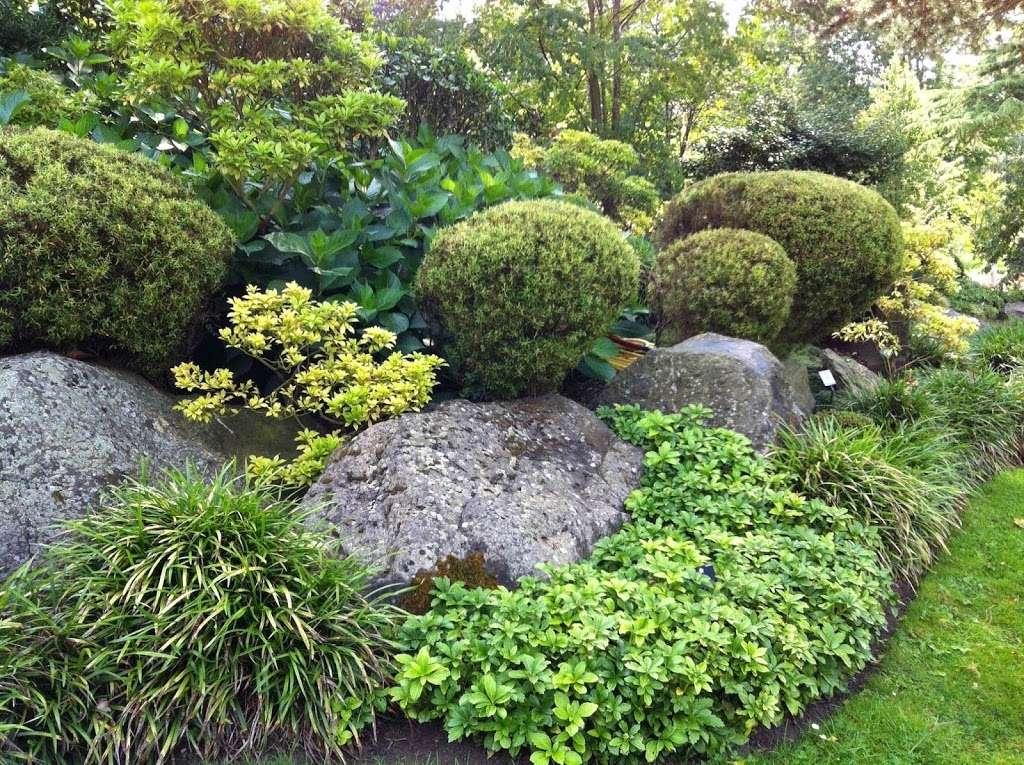 Japanese Garden Information In Hertfordshire - park  | Photo 1 of 8 | Address: 36 Firs Walk, Tewin AL6 0NZ, UK