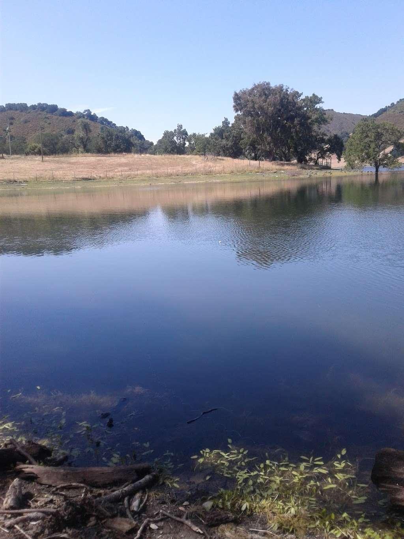 Uvas Reservoir County Park - park    Photo 4 of 10   Address: 14200 Uvas Rd, Morgan Hill, CA 95037, USA   Phone: (408) 779-9232