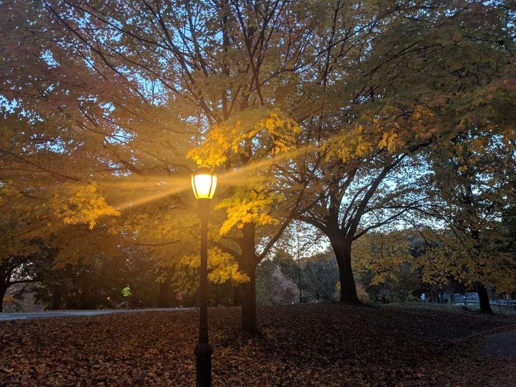 Shakespeare Garden - park  | Photo 5 of 8 | Address: 990 Washington Ave, Brooklyn, NY 11225, USA | Phone: (718) 623-7200