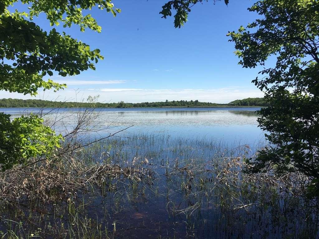 Harry C. Darling Wildlife Management Area - park  | Photo 1 of 10 | Address: 305 Black Mallard Rd, Raynham, MA 02767, USA