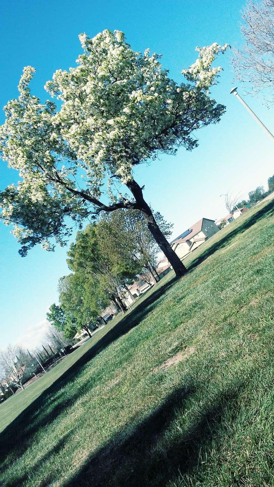 Almondridge Park - park  | Photo 9 of 10 | Address: 3400 Almondridge Dr, Antioch, CA 94509, USA | Phone: (925) 779-6950