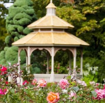 Woodland Park Rose Garden - park  | Photo 4 of 9 | Address: 750 N 50th St, Seattle, WA 98103, USA | Phone: (206) 684-4075