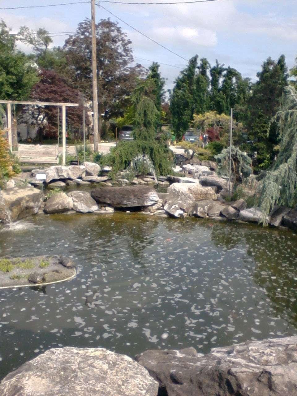 Webers Nursery & Garden Center - store  | Photo 4 of 9 | Address: 1912 Martinsburg Pike, Winchester, VA 22603, USA | Phone: (540) 722-9340