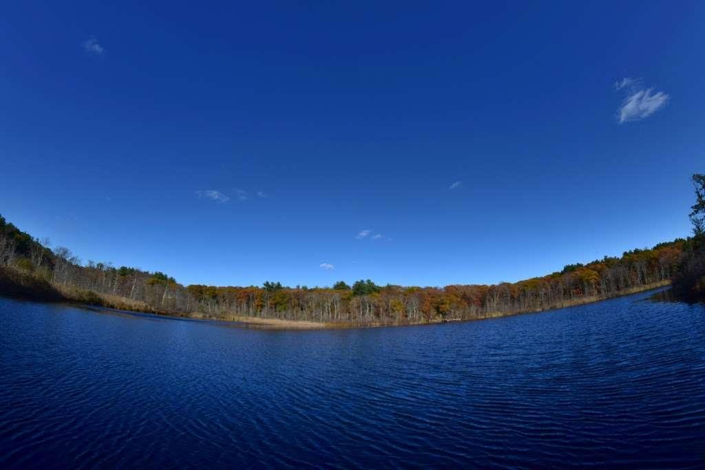 Turtle Pond - park  | Photo 8 of 10 | Address: Turtle Pond, Boston, MA 02132, USA